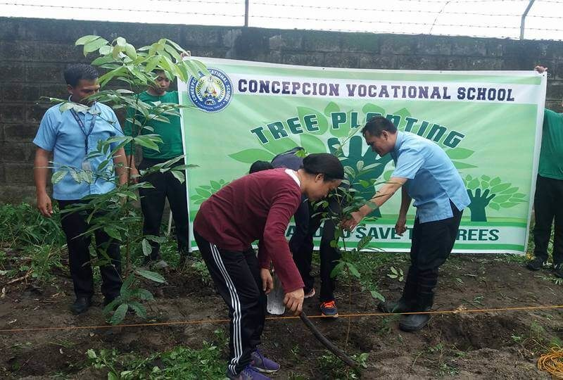 Cool and shady tree-planting 2017